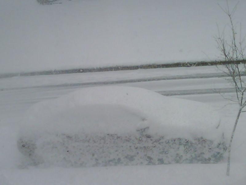 snow-in-raleigh-jan-20-2009